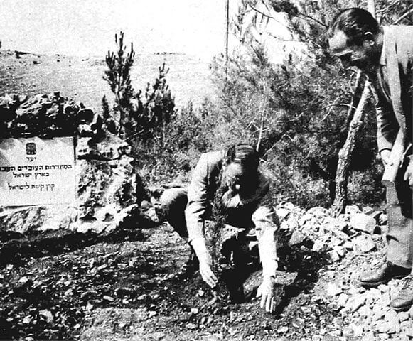 Photo of Frank Sinatra planting a tree for his daughter, Nancy, in the Histadrut Forest of Jerusalem while on a visit in 1962.