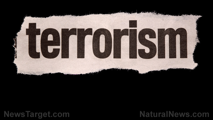 Image: Harold Meyerson wants all Republicans to be put on a domestic terrorism watch list