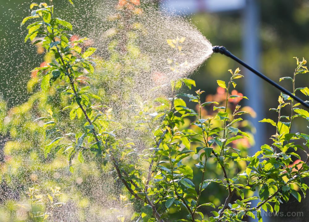 Image: Living near pesticide-treated farms raises risk of childhood brain tumors