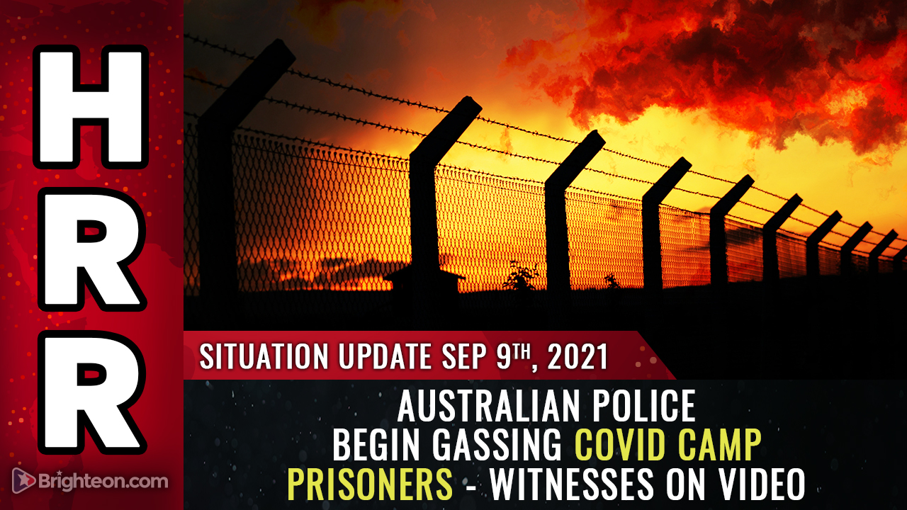 """Image: Disturbing video: Australian covid camp police threaten to """"gas"""" covid prisoner instead of releasing him after 14 days"""