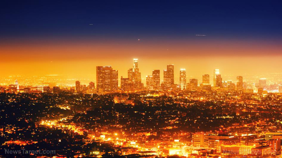Image: Los Angeles descends into wasteland of defunct businesses because residents have failed to break out of lockdown