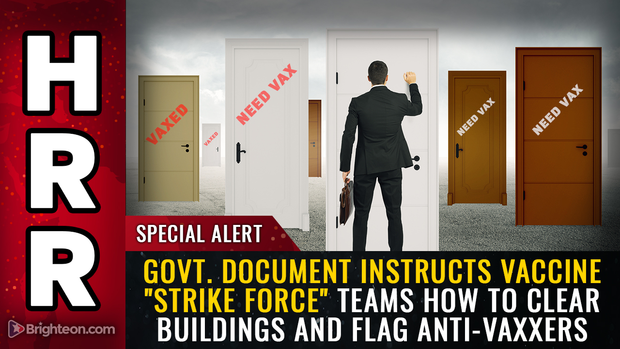 """Image: Government document instructs vaccine """"strike force"""" teams how to clear buildings, violate trespass laws and flag anti-vaxxers for forced quarantines"""