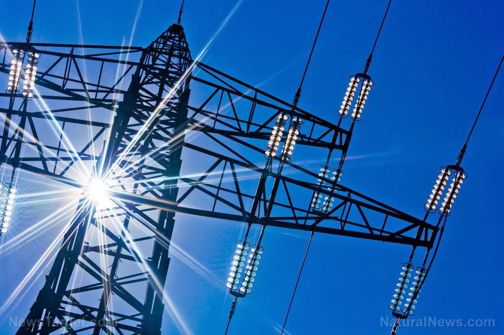 Image: Here's what will happen if the power grid goes down (plus tips on how to survive)