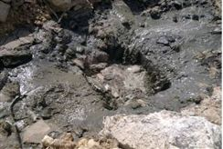 Sewage streams into Wadi Kelt