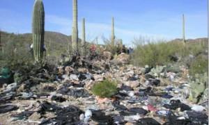 trash_border-300x180