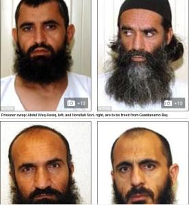 terrorist released