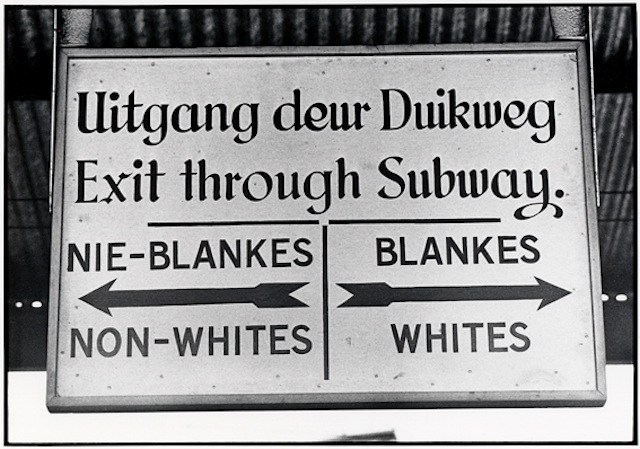Apartheid essays