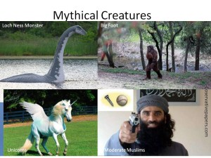 Mythical Creatures Moderate Muslims